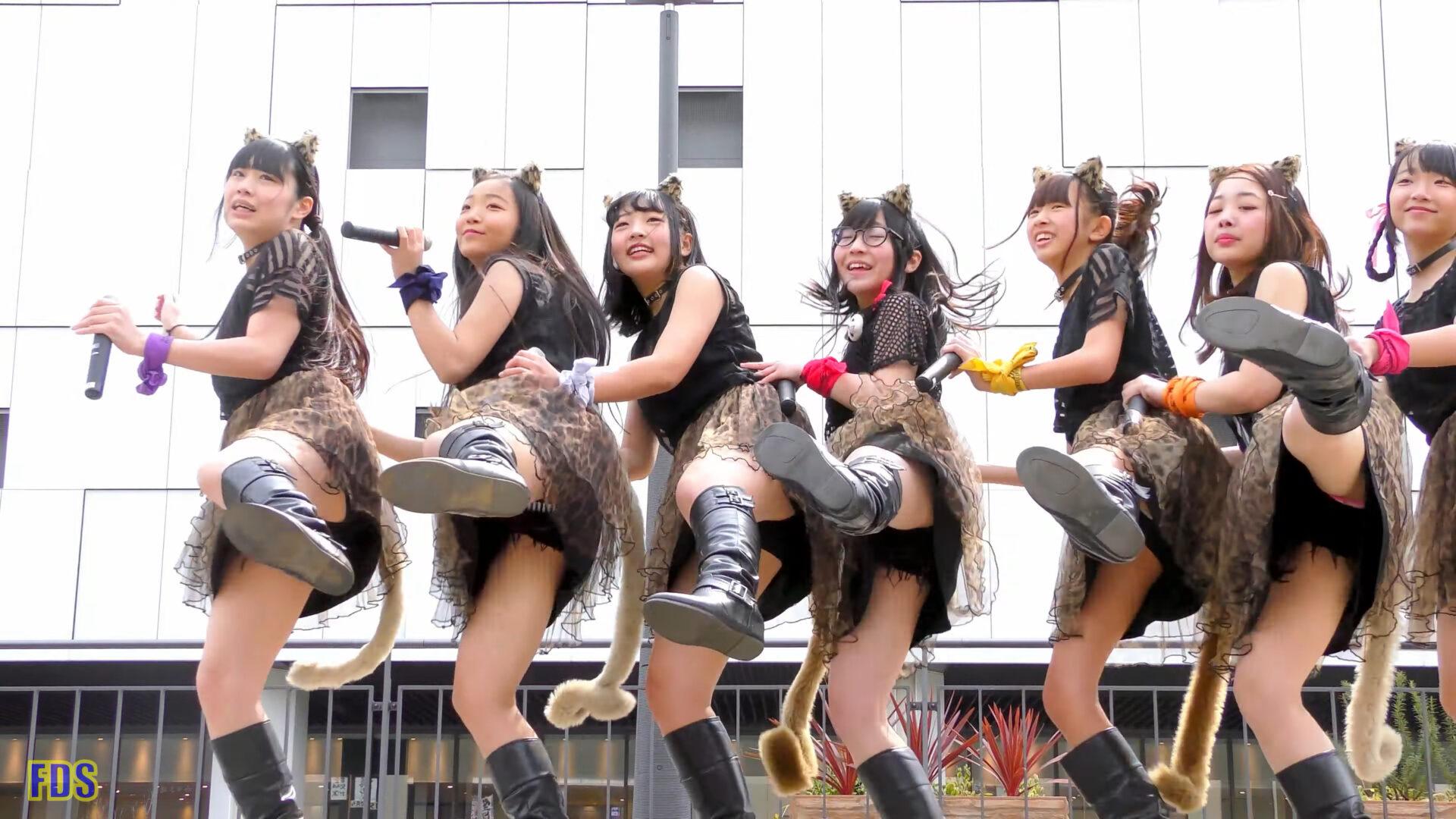 AnimalBeast 「旅するカンガルー」 アイドル ライブ Japanese girls Idol group [4K] 02:37