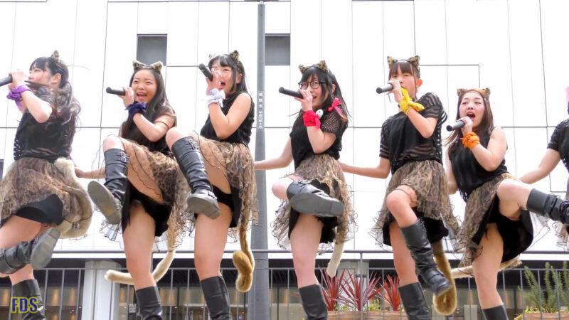 AnimalBeast 「旅するカンガルー」 アイドル ライブ Japanese girls Idol group [4K] 02:57